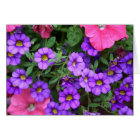 [Colourful Flowers] Calibrachoa  - Any Occasion Card