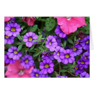 [Colourful Flowers] Calibrachoa  - Any Occasion Card