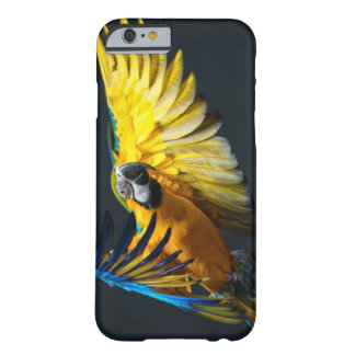 Colourful flying Ara on a dark background Barely There iPhone 6 Case