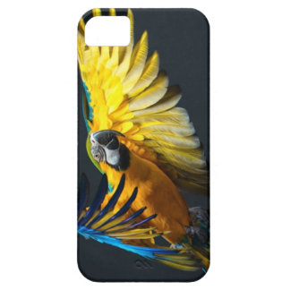 Colourful flying Ara on a dark background iPhone 5 Case