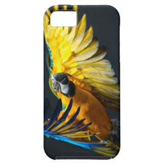 Colourful flying Ara on a dark background Tough iPhone 5 Case