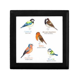 Colourful garden birds gift box