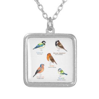 Colourful garden birds silver plated necklace