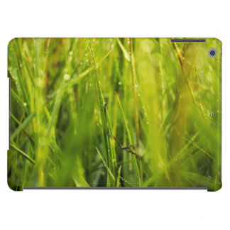 colourful green natural outdoor abstract design case for iPad air