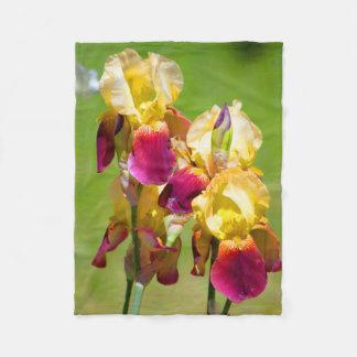 Colourful Iris Blanket