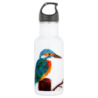 Colourful Kingfisher Bird Art 532 Ml Water Bottle