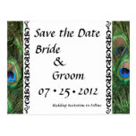 Colourful Peacock Eyes Wedding Save the Date