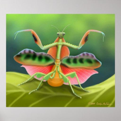 Colourful Praying Mantis Bug Poster