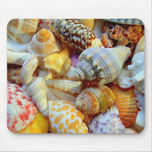 Colourful Seashells Mouse Pads