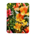 Colourful Snapdragons Flexible Magnet