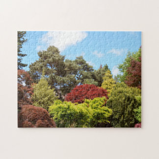 Colourful trees jigsaw puzzle