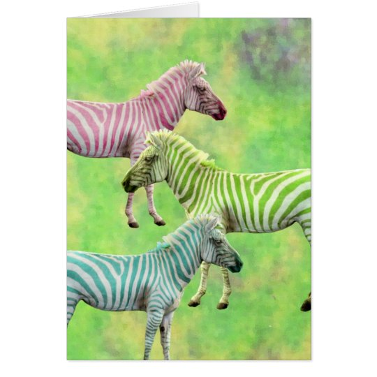 Colourful Zebras Card