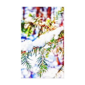 Colours in the Snow Canvas Print