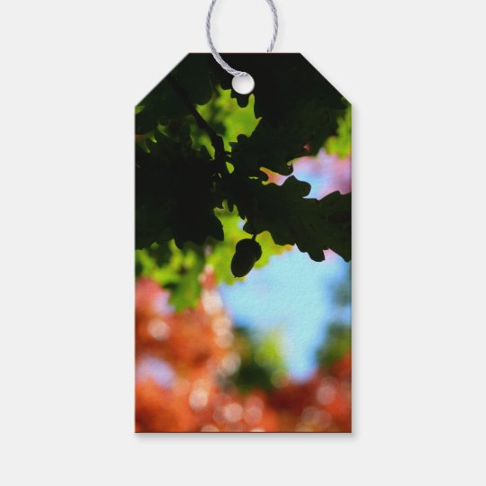Colours of Autumn 02 Gift Tags