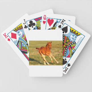 Colt In Motion Bicycle Playing Cards