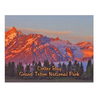 Colter Bay Grand Teton National Park Postcard
