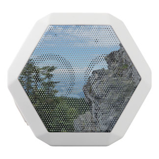 Columbia Gorge/Larch Mountain Speaker - Love Star