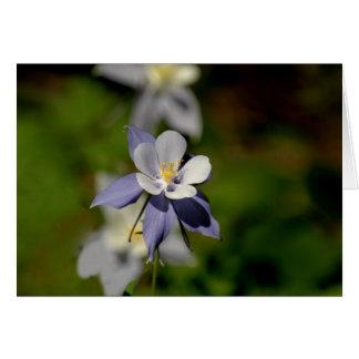 Columbine Flower 7 Card