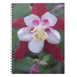 Columbine Notebook