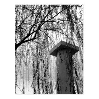 Column Under Weeping tree Black and White Picture Postcard