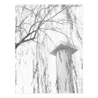 Column Under Weeping Tree High Dynamic range Postcard