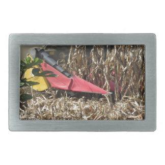 Combine harvesting corn crop in cultivated field belt buckle