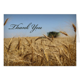 Combine in Wheat Field Thank You Card