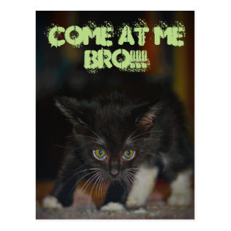 Come at me Bro! Postcard
