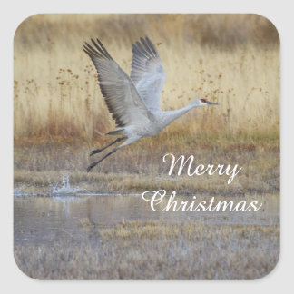 come fly with me, Merry Christmas Square Sticker
