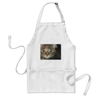"""Come if you dare"" says the cat Standard Apron"