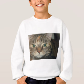 """Come if you dare"" says the cat Sweatshirt"