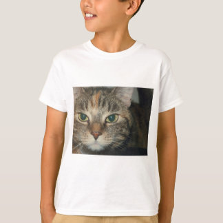 """Come if you dare"" says the cat T-Shirt"