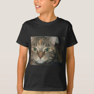"""""""Come if you dare"""" says the cat T-Shirt"""