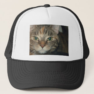 """""""Come if you dare"""" says the cat Trucker Hat"""