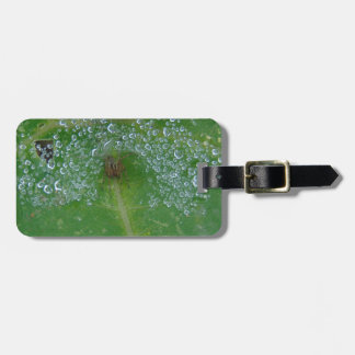 Come On In Luggage Tag