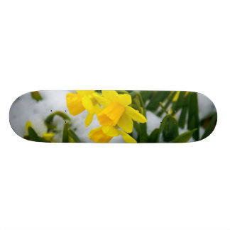 Come On Spring Time Skate Deck