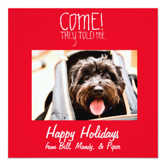 COME! Pet Photo Holiday Card