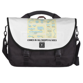 Comes In All Shapes Sizes Bacterial Morphology Computer Bag