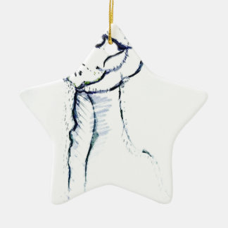 Comfort and Joy by Luminosity Ceramic Star Decoration