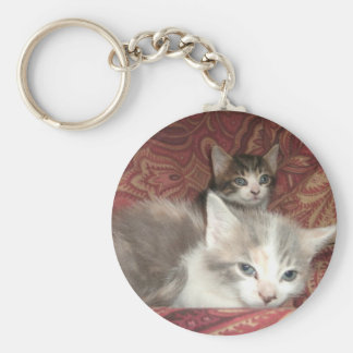Comfy Kitties Basic Round Button Key Ring