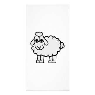 Comic sheep picture card