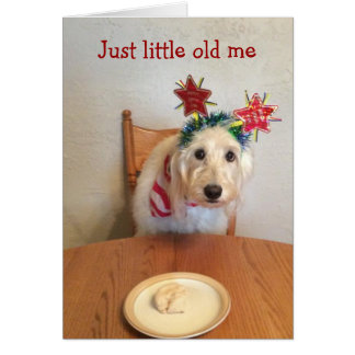 COMICAL AND DRESSED UP MOLY SAYS HAPPY BIRTHDAY GREETING CARD