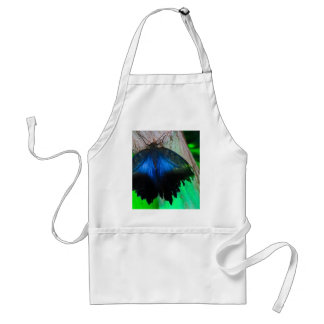 Common blue butterfly standard apron