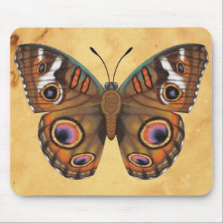 Common Buckeye Butterfly Mouse Pad