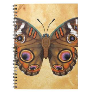 Common Buckeye Butterfly Notebooks