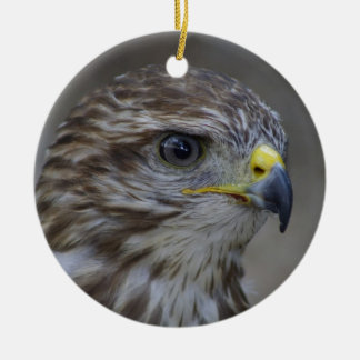 Common Buzzard Portrait Ceramic Ornament