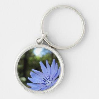 Common Chicory Key Ring
