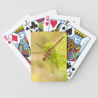 Common Darter Dragonfly Poker Deck