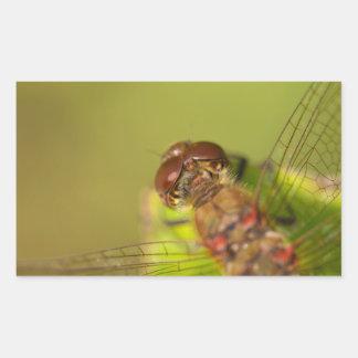 Common Darter Dragonfly Rectangular Sticker