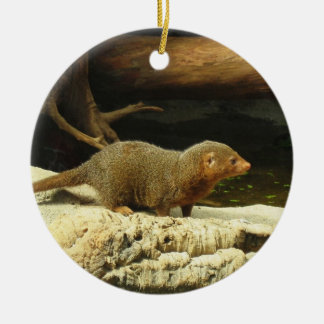 Common Dwarf Mongoose ceramic ornament